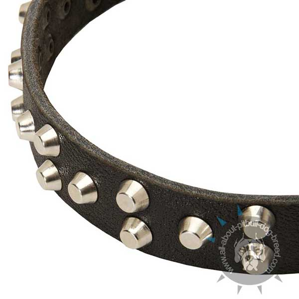 Leather Pitbull Collar Strap with Hand Set Nickel Pyramids