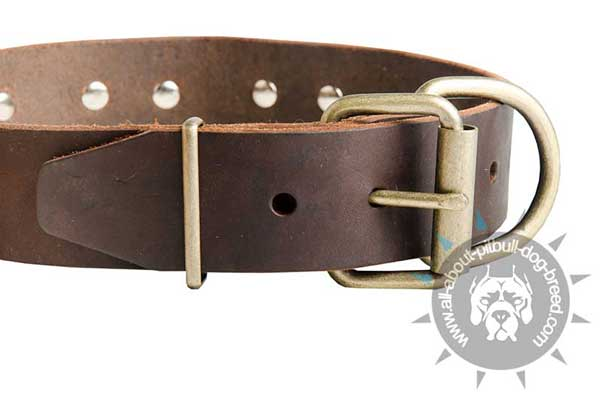 Leather Pitbull Collar Equipped with Strong Buckle and Ring