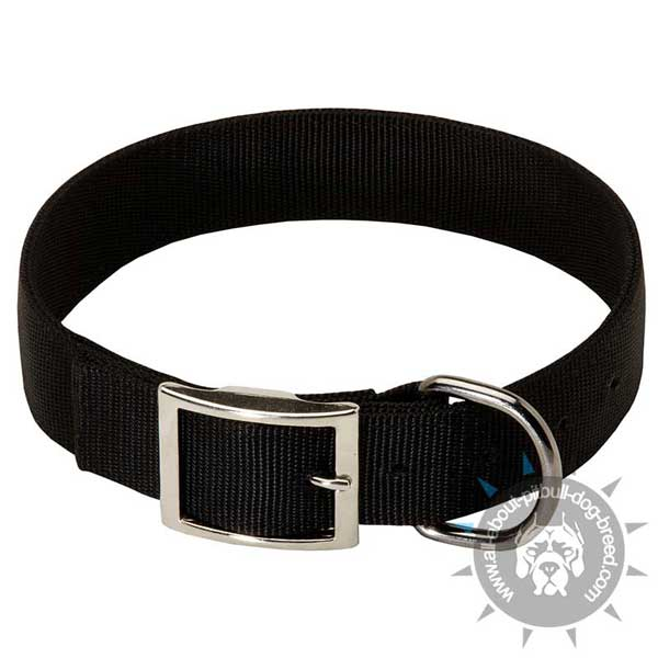 Classic Design Nylon Pitbull Collar Adjustable