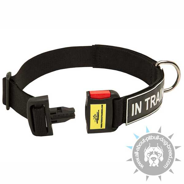 Nylon Pitbull Collar Easy Adjustable with Quick Release Buckle