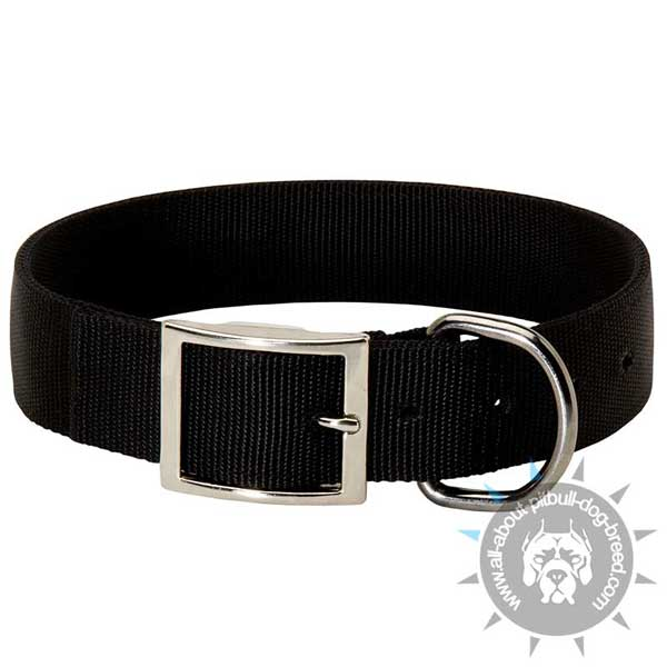 Buckled Nylon Pitbull Collar with Rust-Proof Nickel Plated Hardware