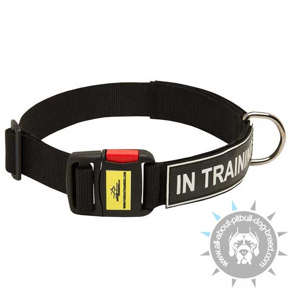 Nylon Pitbull Collar Equipped with Patches and Easy Quick Release Buckle