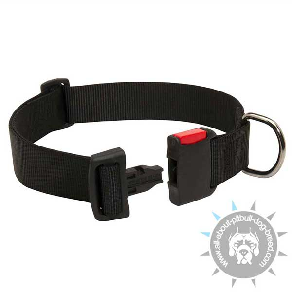 Nylon Pitbull Collar with Convenient Buckle