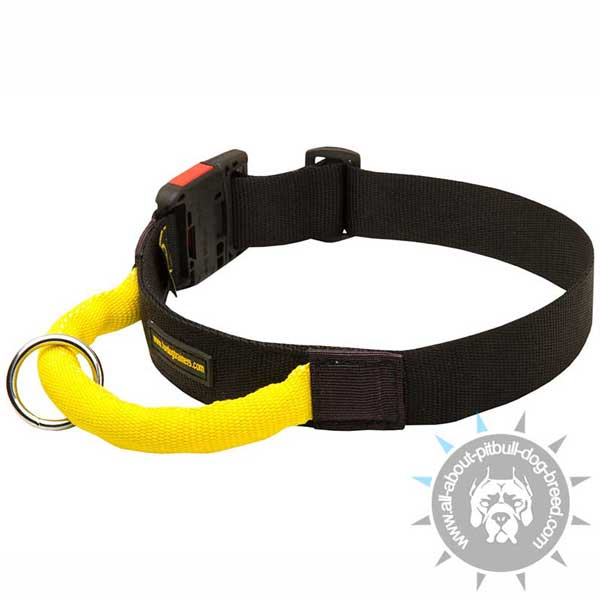 Nylon Pitbull Collar Quick Release with Bright Handle