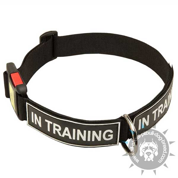 Nylon Pitbull Collar Quick Release with ID Patches