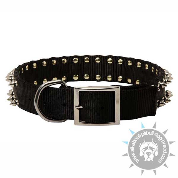 Buckled Spiked Nylon Pitbull Collar with Strong Ring