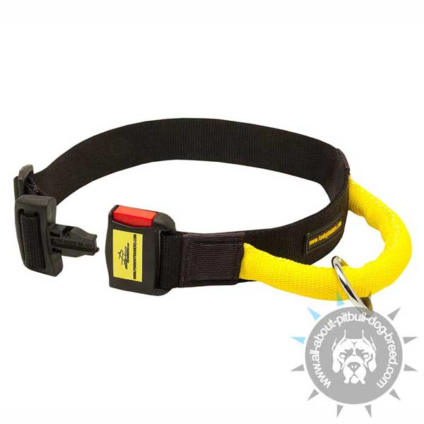 Nylon Pitbull Collar with Buckle for Easy Locking