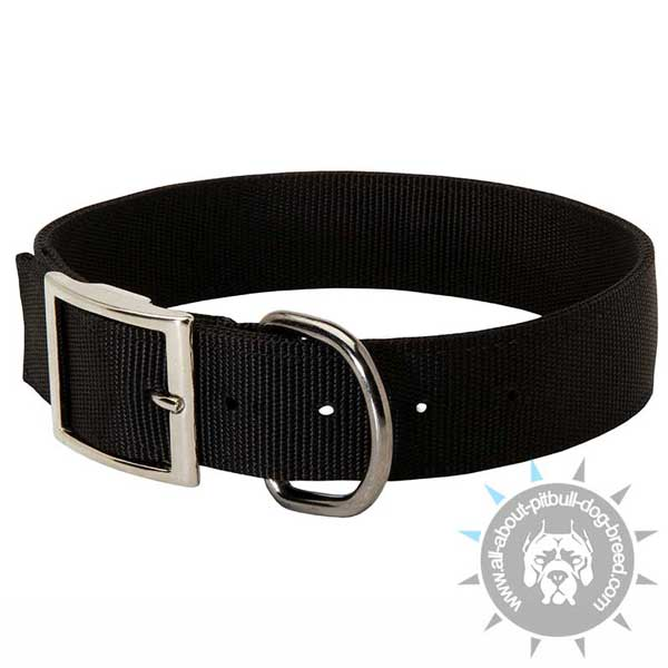 Nylon Pitbull Collar with with Durable Ring for Leash Attachment