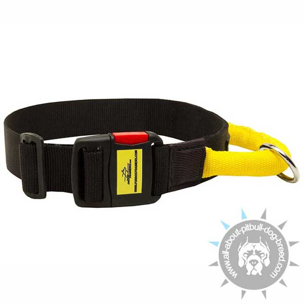 Nylon Pitbull Collar Equipped with Easy Quick Release Buckle