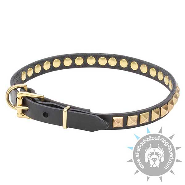 Leather Dog Collar Secure Riveted