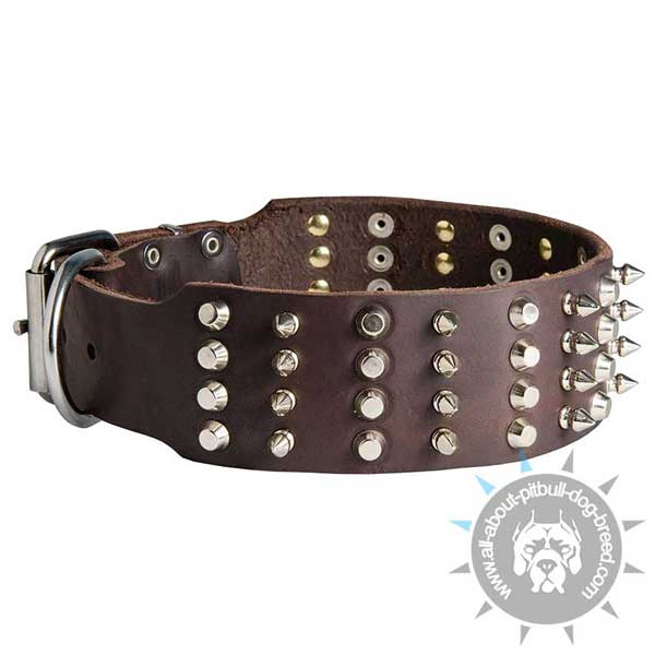 Leather Pitbull Collar Decorated