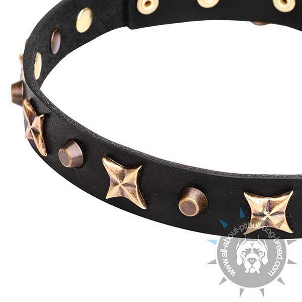 Extraordinary Leather Collar with Bronze-plated Decor