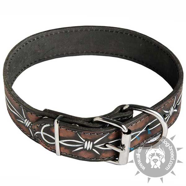 Barbed Wire Leather Pitbull Collar with Nickel Plated Fittings