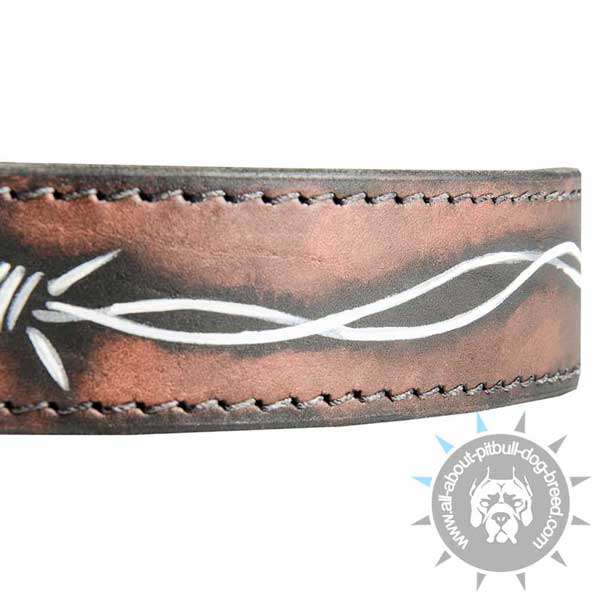 Stitched Leather Pitbull Collar Stitched