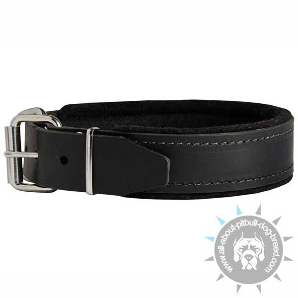 Training dog collar for large dog breeds