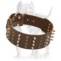 Wide  Studded Leather Collar