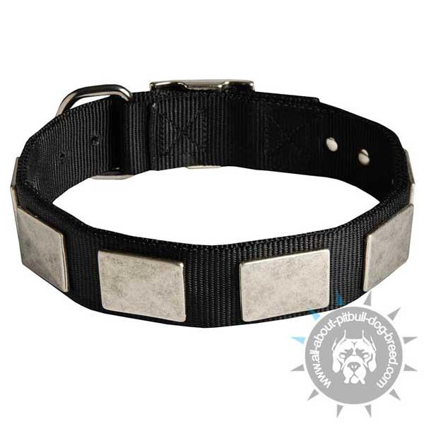 Nylon Dog Collar With Vintage Plates