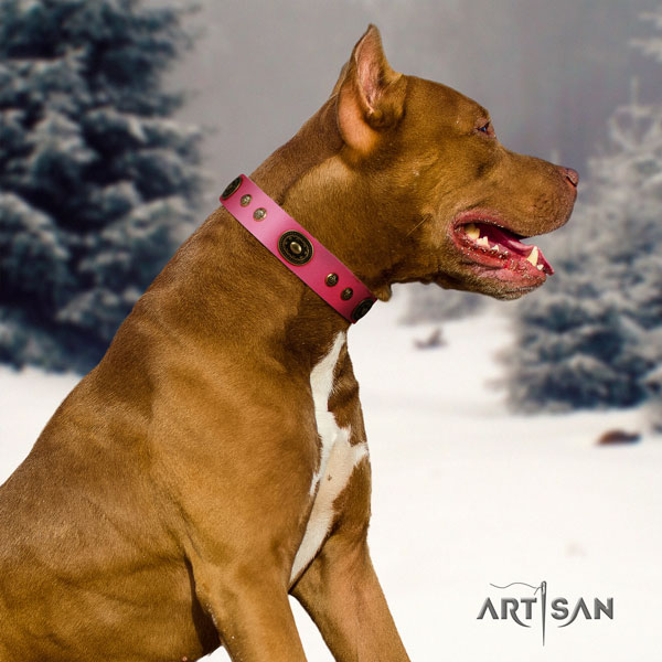 Pitbull comfortable natural genuine leather dog collar with remarkable decorations