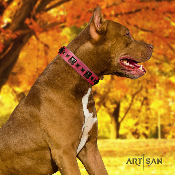 Pitbull adjustable full grain leather dog collar with stylish decorations