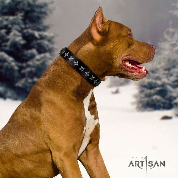 Pitbull easy adjustable natural genuine leather dog collar with stylish adornments