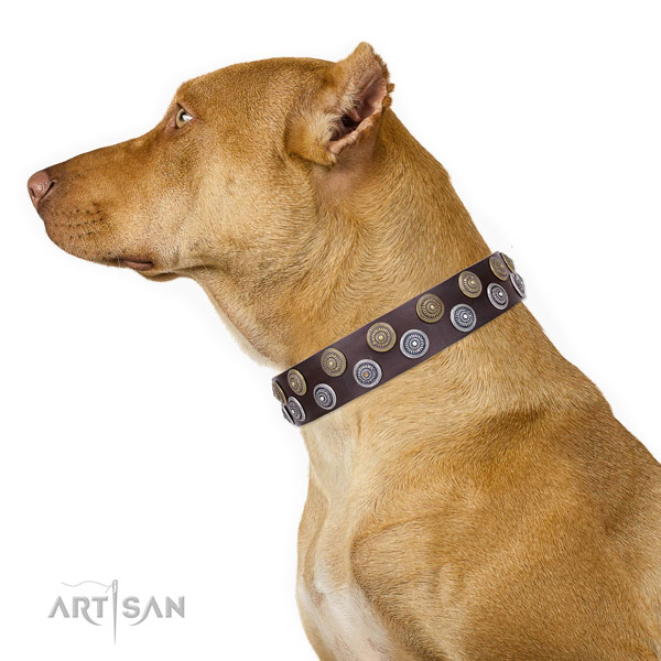 Pitbull fashionable full grain genuine leather dog collar for daily walking