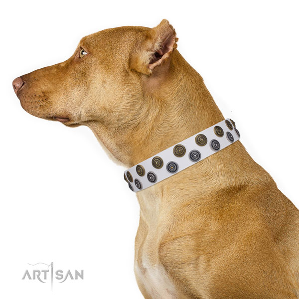 Pitbull convenient full grain natural leather dog collar for walking
