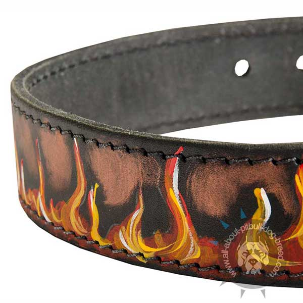 Elegant     dog collar for Pitbulls