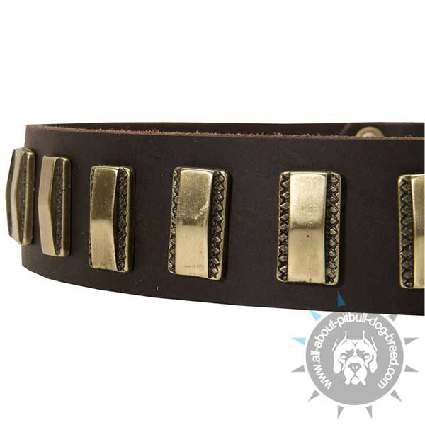 Designer Leather Dog Collar will do your Pitbull nothing but a great deal of good