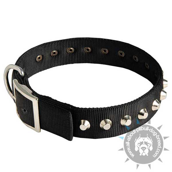 Soft nylon collar for Pitbulls