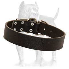 Easy walk leather dog collar