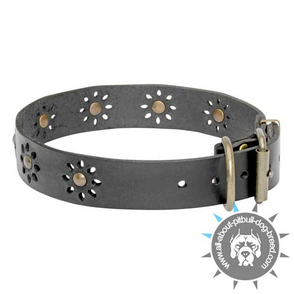 Natural Leather Collar with Adjustable Buckle