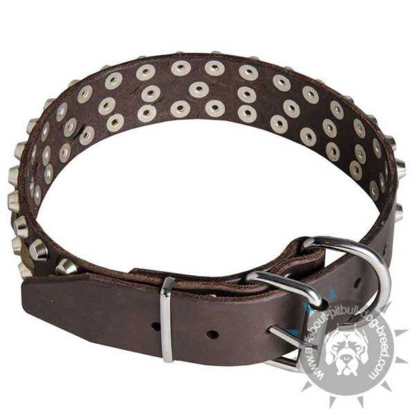 Leather Pitbull Collar with Riveted Studs and Cones