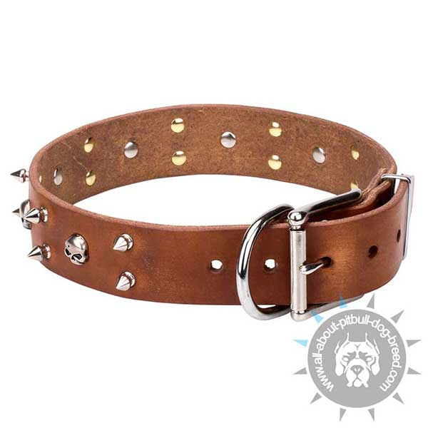 Genuine Leather Collar with Nickel-Plated Hardware