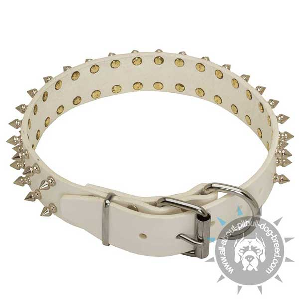 Spiked Pitbull Leather Collar with Nickel Hardware