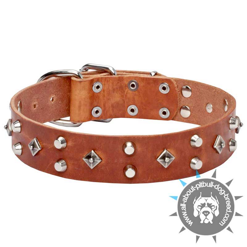Stylish Tan Leather Dog Collar with Nickel-plated Decorations