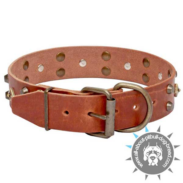 Buckle Style Tan Leather Dog Collar with Durable Hardware