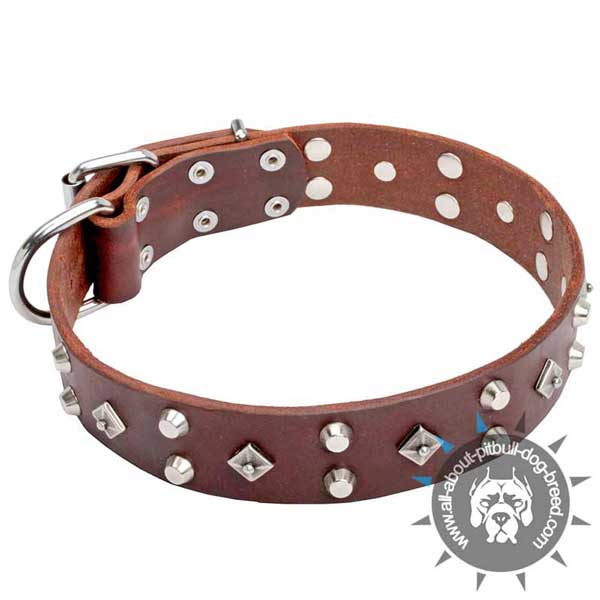 Studded Brown Leather Pitbull Collar for Stylish Walking