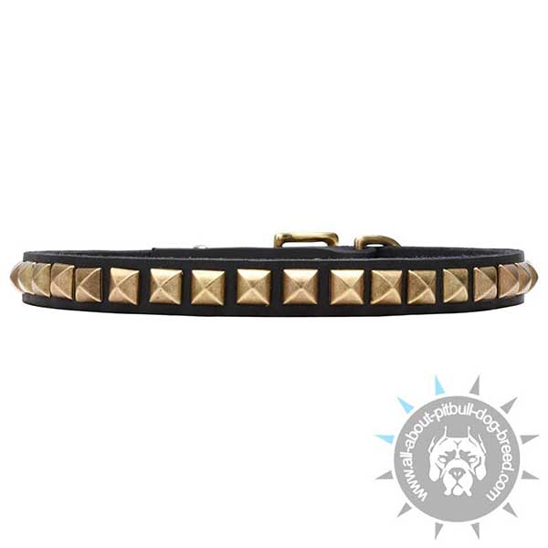 Narrow Leather Collar with Brass Pyramids