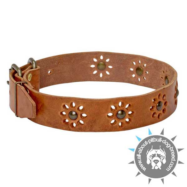 Decorated with Flowers Leather Collar