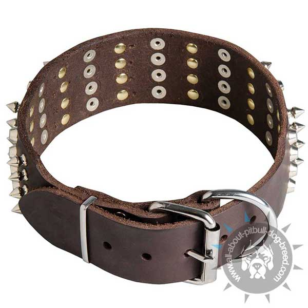 Durable Leather Collar with nickel Hardware
