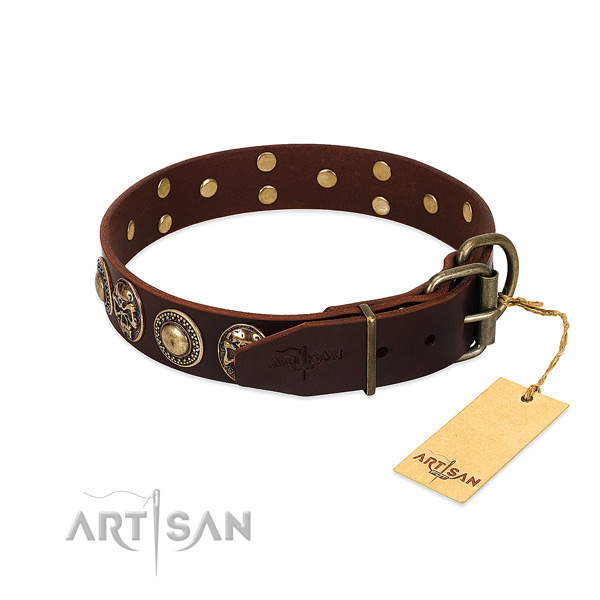 Daily walking full grain leather collar with adornments for your canine