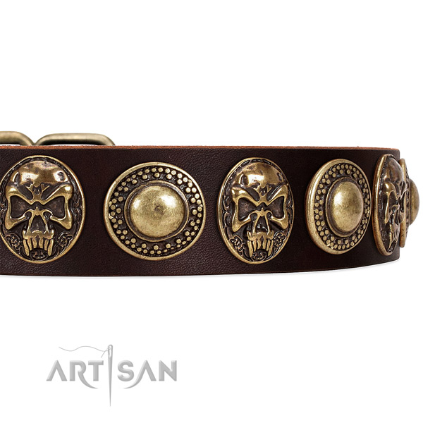 Full grain natural leather dog collar with adornments for comfy wearing
