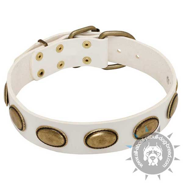 Stylish White leather dog collar made of the finest materials