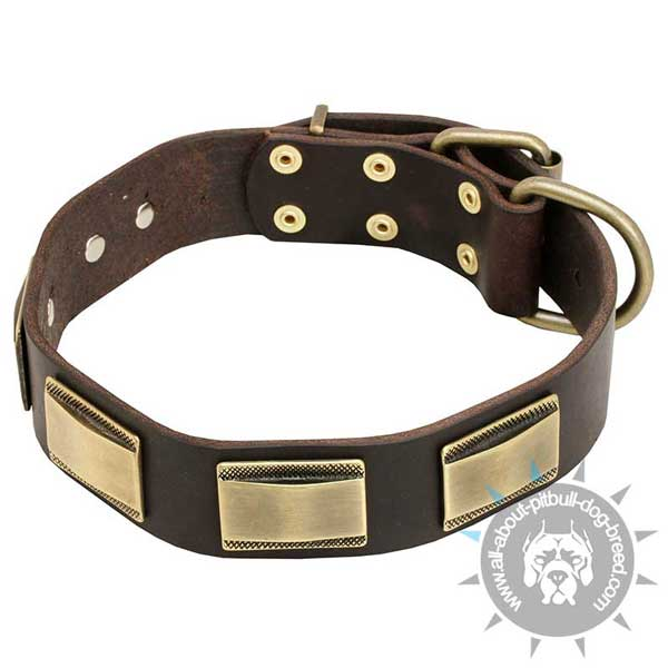Non-stretching leather dog collar
