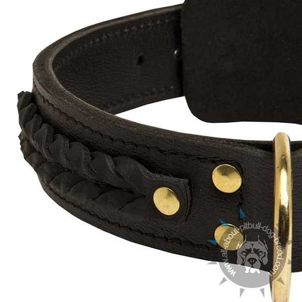 Pitbull Leather Collar with Braided Decorations