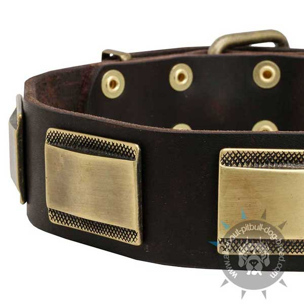 Handcrafted leather dog collar for walking and training
