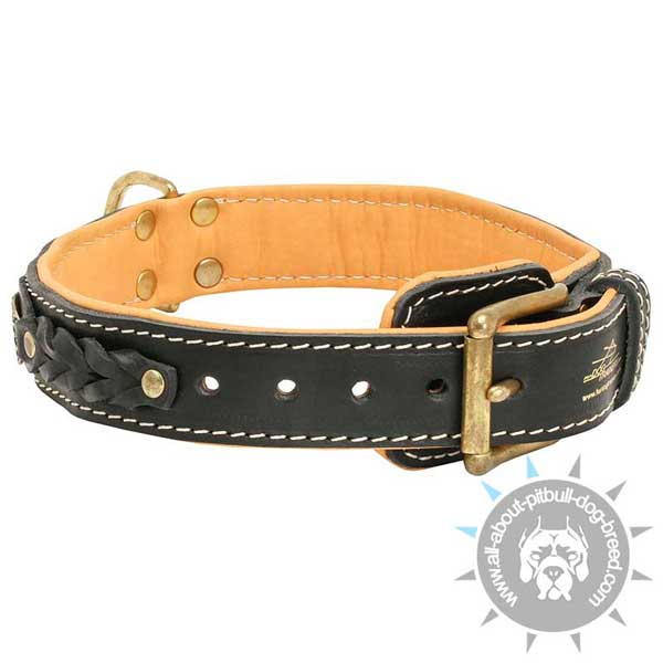 New dog collar leather with brass fittings
