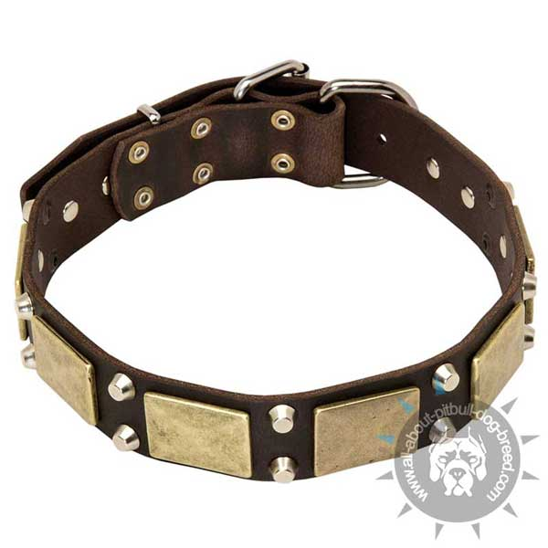 Reliable leather-dog collar is functionally fashionable