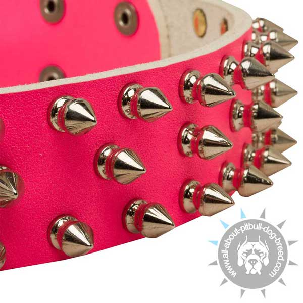 Pink unique spiked leather Pit Bull collar for walks
