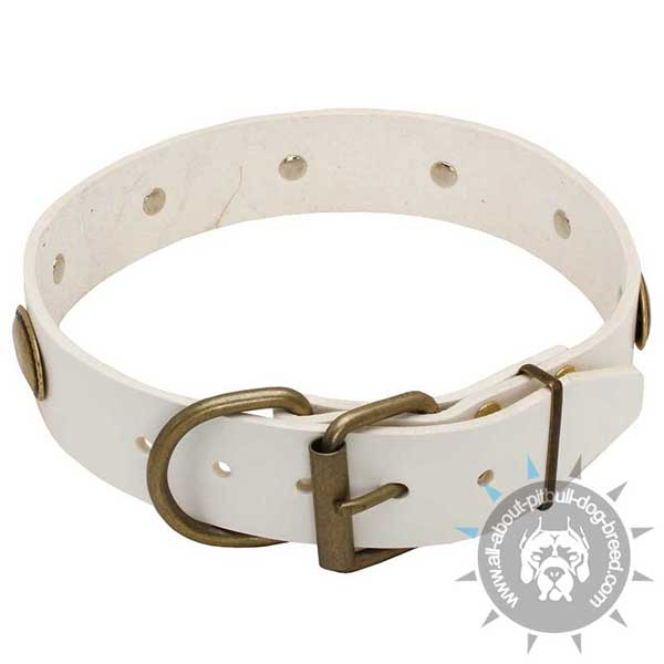 Exquisite white leather dog collar with reliable fittings